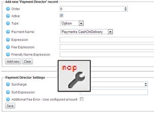 Picture of Professional Services for Payment Director